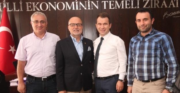 Bursa'da toplulaştırmayı bekleyen 45 bin hektar arazi var