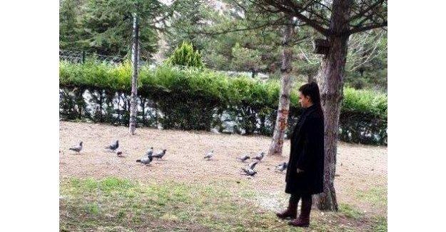 """Tuğçe'nin gözünde """"kuşlar"""""""