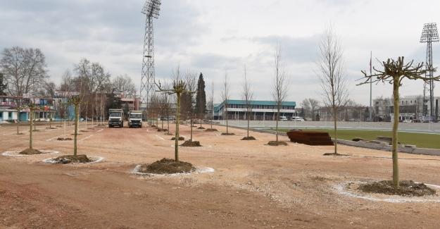 Eski Stadyum Bölgesi komple yeşil alan yapılıyor