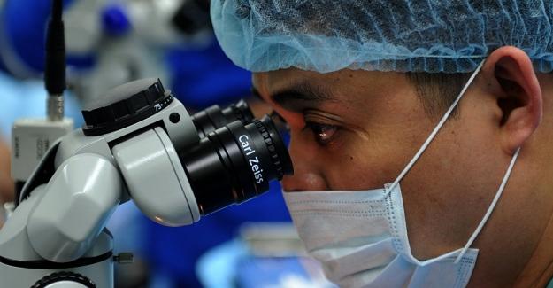 """Bilim insanları insan vücudunda yeni bir organ keşfetti: """"İnterstitium"""""""