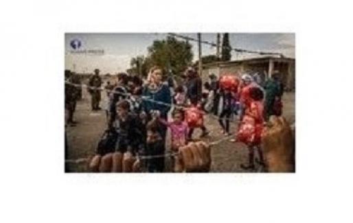 Türkiye'de 3,5 milyon Suriyeli yaşıyor