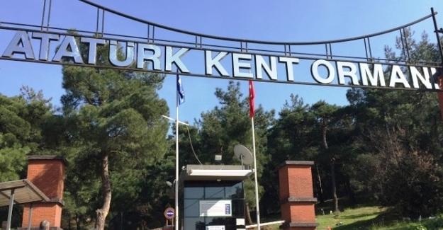 Kent Ormanı ticari alana dönüştü