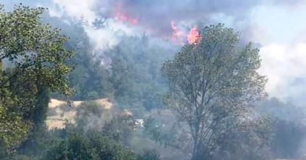 Bursa'da orman yangını yerleşim bölgelerine de sıçradı !