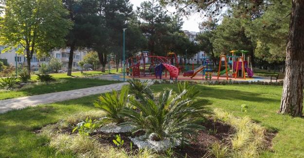 Nilüfer Petunya Parkı vatandaşların ilgi odağı
