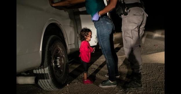 Dünya Basın Fotoğrafı Ödülleri: 2019'un en çarpıcı kareleri
