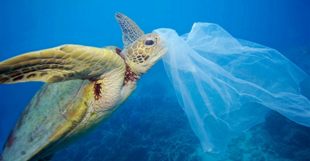 Yoksul ülkelerin plastik atık çöplüğüne dönüşmesini engelleyen sözleşmeyi, ABD hariç, 187 ülke kabul etti