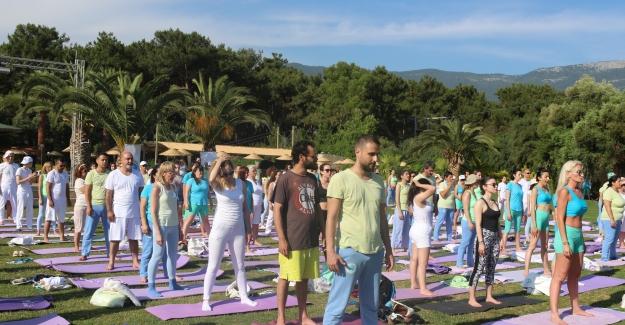 Uluslararası Farkındalık Festivali 13 - 14 Temmuz'da Abant'ta yapılıyor