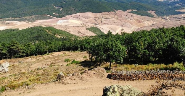 Beş soruda Kaz Dağları'nda siyanür kullanımı