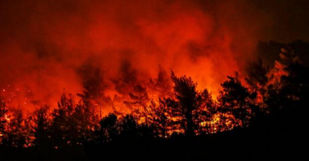 İzmir Yangını kontrol altına alındı