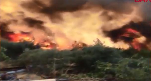 Muğla'da art arda başlayan yangınlar devam ediyor