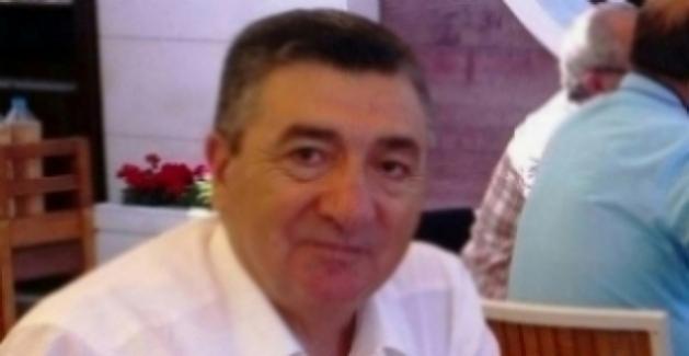 Remzi Dilan yazdı: 'Mavi Vatan', 'Yeşil Vatan' ve Zeytinin Dostu 'İncir'