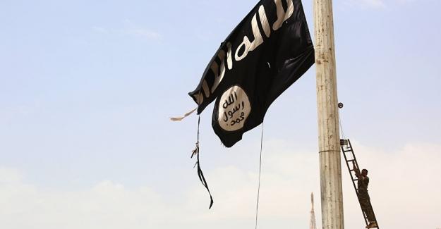 Iraklı çobanlar, IŞİD liderlerinin 25 milyon dolar değerindeki gömüsünü yağmaladı