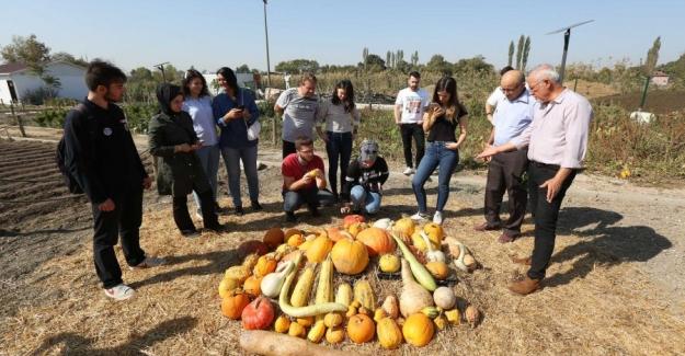 Nilüfer'de Organik Tarım'ın tanıtım ve yaygınlaştırılma çalışmaları