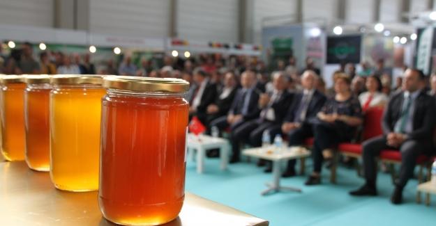 Adana 9. Geleneksel Bal Yarışması