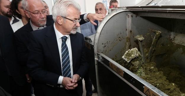 Nilüfer'de çöpe atılmıyor toprağa kazandırılıyor