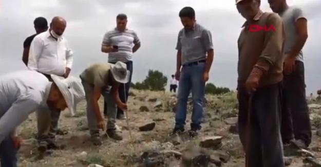 Van Erciş'te korkutan akrep istilası