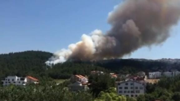 Bursa Demirci Mahallesi çamlık bölgesinde korkutan yangın…