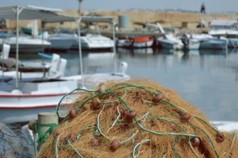 Su ürünleri avcılığı Akdeniz'de 15 Eylül, diğer denizlerimizde 1 Eylülde başlayacak