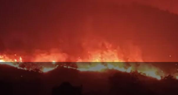 Bugün tüm Türkiye'de 24 yangın çıktı, 13 tanesi kontrol altında..