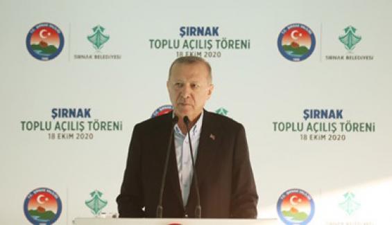 Erdoğan, Kıbrıs Cumhurbaşkanlığı'na seçilen Ersin Tatar'ı Kutladı