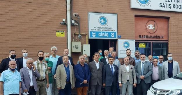 """Türkoğlu Mudanya'dan seslendi: """"Yağlık zeytin taban fiyatı en az 5 TL olarak açıklanmalı..."""""""