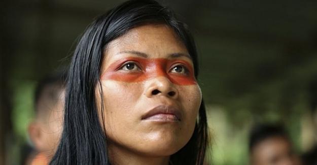 Amazon Ormanlarında Bir Çevre Kahramanı
