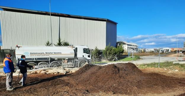 Nilüfer'de 8 bin ton budama atığı kompost gübre oldu