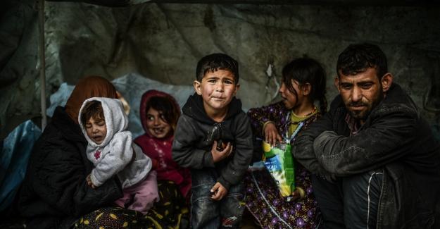 Türkiye'deki Suriyelilerin şaşırtıcı doğum oranı