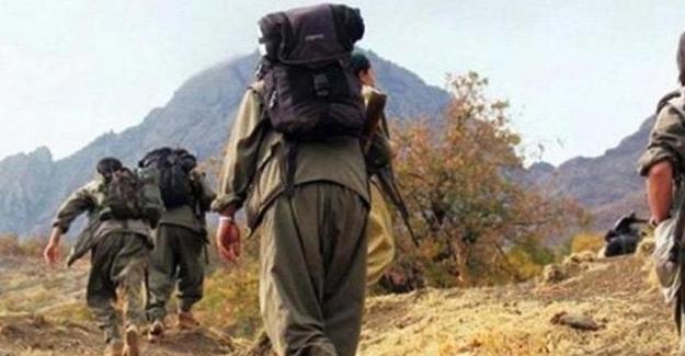 28 yıldır dağda olan terörist, ikna sonucunda teslim oldu!
