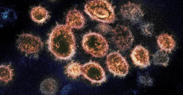 Eksikliği Kovid-19'da ani ölüme neden olabilen vitamin açıklandı