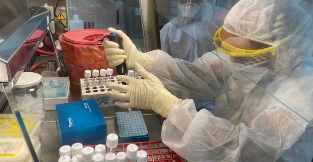 KKTC'de COVID-19 Aşısı Yaptırmak İsteyenlerin Oranı Yüzde 46'da Kaldı...