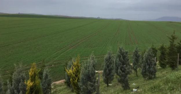 """Bandırma ve Erdek'te sanayi bölgesi itirazı: """"Tarım biter.."""""""