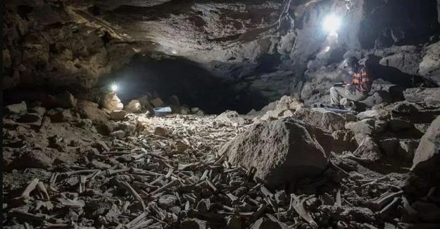 Araştırmacılar yıllarca korkudan giremedi: Mağaradaki on binlerce insan ve hayvan kemiğinin gizemi çözüldü