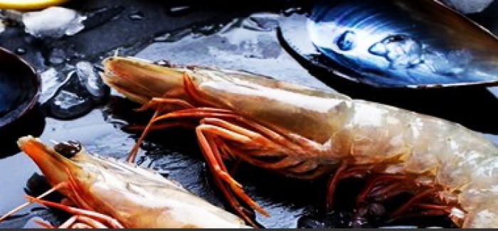 Diyanet'ten bir açıklama daha! Deniz ürünleri haram mı helal mi?
