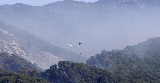 Kazdağları'nda yangın: Soğutma çalışmaları sürüyor