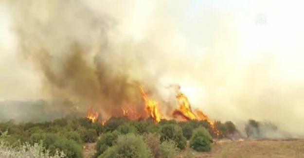 Manisa'da makilik alanda çıkan yangın kontrol altına alındı
