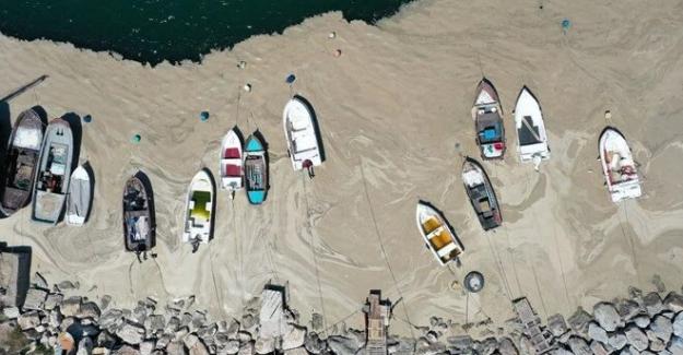 Marmara Denizi'ni kurtaracak rapor