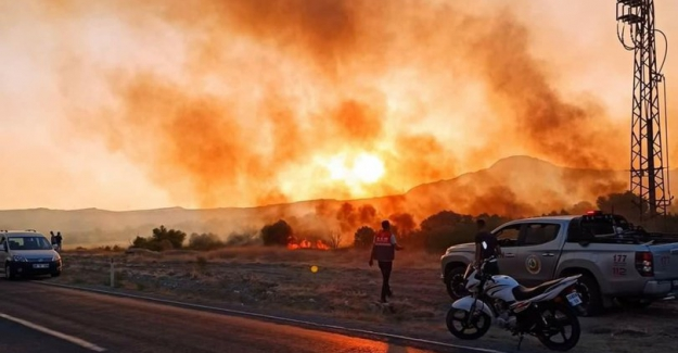 Yangınlara Ankara'da Nallıhan Kuş Cenneti de eklendi:  Hızla yayılan yangın kontrol altına alındı