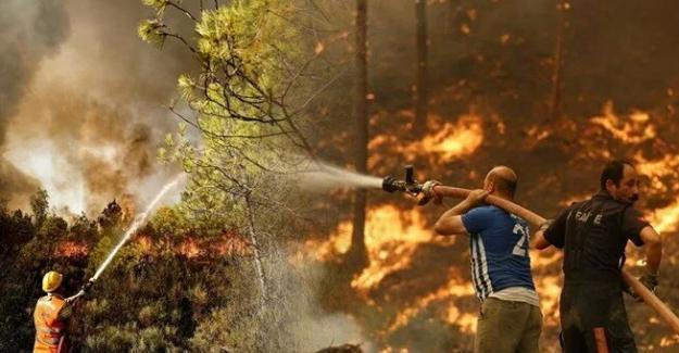 Yangınların 7. gününde 5 ilde 14 noktada söndürme çalışmaları devam ediyor.
