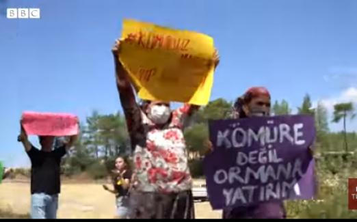 Akbelen Ormanı eylemcileri: 'Vicdanı olan hiç kimse bu ormanın kesilmesine onay vermez'