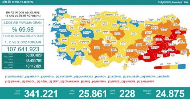 Son 24 saatte 25 bin 861 kişinin testi pozitif çıktı, 228 kişi  de hayatını kaybetti