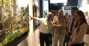 'Bursa'da Bahar' Fotoğraf Yarışması ödülleri sahiplerini buldu