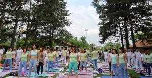 Uluslararası Farkındalık Festivali  14 - 15 Temmuz günlerinde Kastamonu'da
