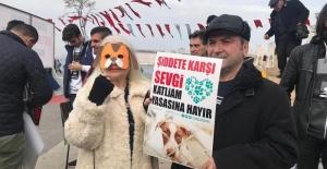 Hayvana karşı şiddet yasasına protesto