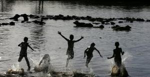 Irak'ta Fırat ve Dicle'deki binlerce ölü balık karaya vurdu