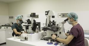 Tüp bebek laboratuvarlarında hangi işlemler yapılıyor?