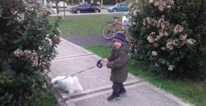 Evcil hayvanlar çocuklara sevmeyi, korumayı öğretiyor