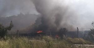 Muğla'da termik santralde yangın!