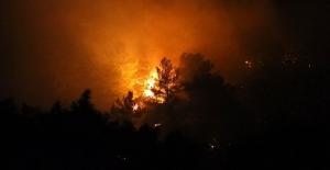 'Son 5 yılda çıkan 10 bin 130 orman yangınının 5 bin 862'sinin çıkış nedeni aydınlatılamadı'