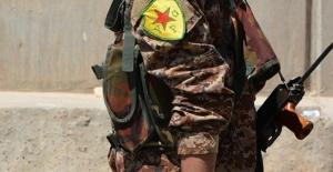 Almanya'dan en az 270 terörist PKK/YPG saflarına katıldı.